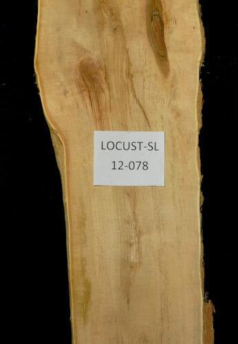 Locust live edge wood slab for sale for desks, tables, designer wall treatments, other. Item #Locust-SL-12-078