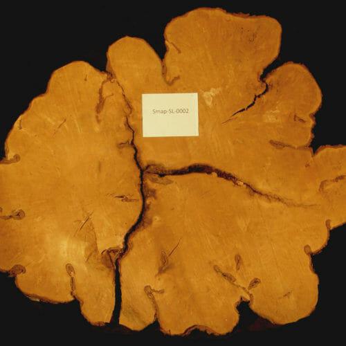 Bark House Soft Maple Round
