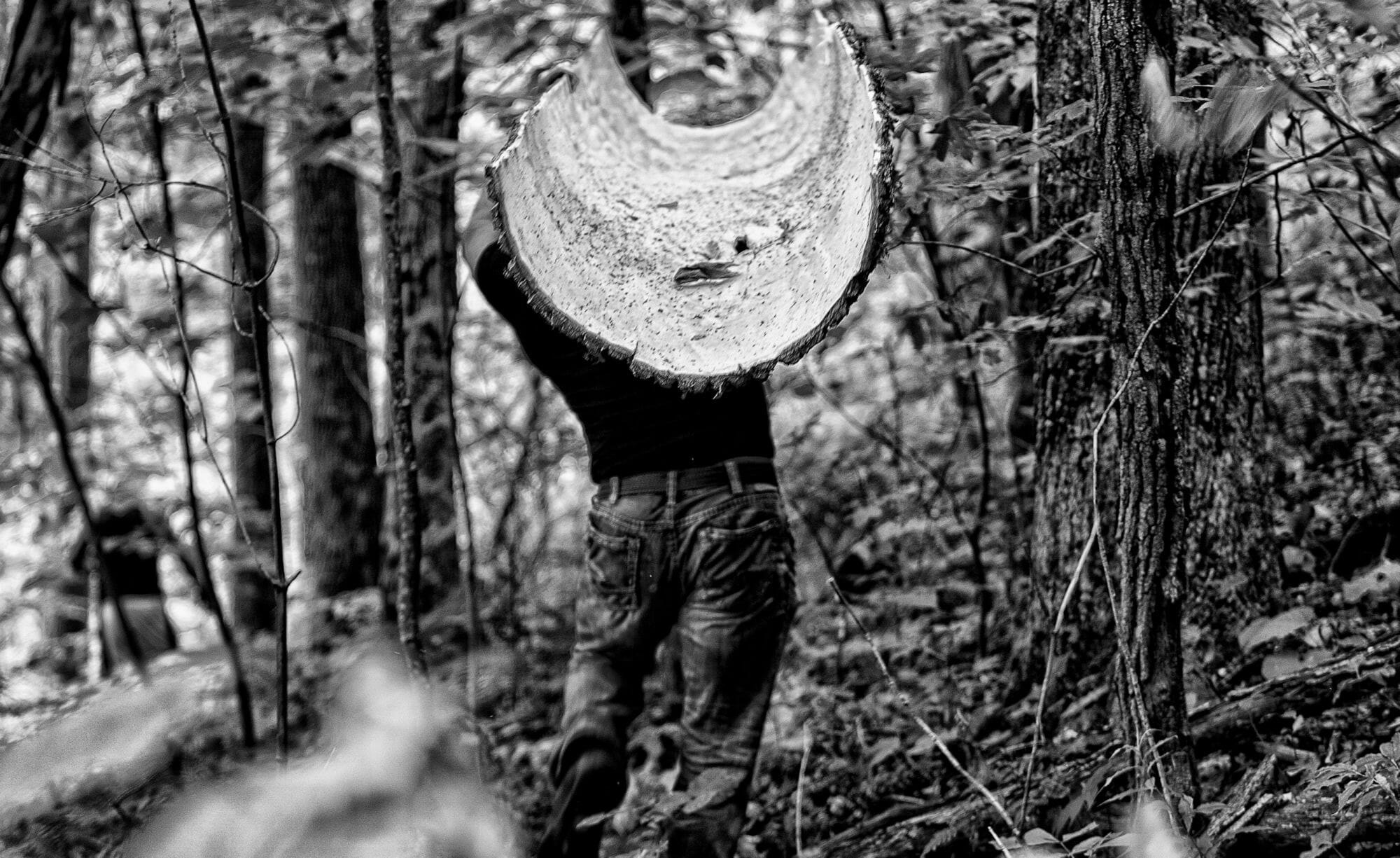 Marty McCurry of the Bark House at Highland Craftsmen carries poplar bark panel out of woods