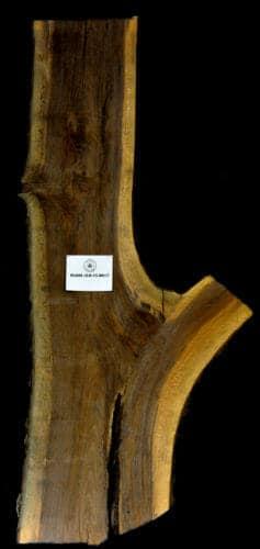 Black Walnut live edge wood slab for sale for desks, tables, designer wall treatments, other. Item #BKWL-SLR-15-0017