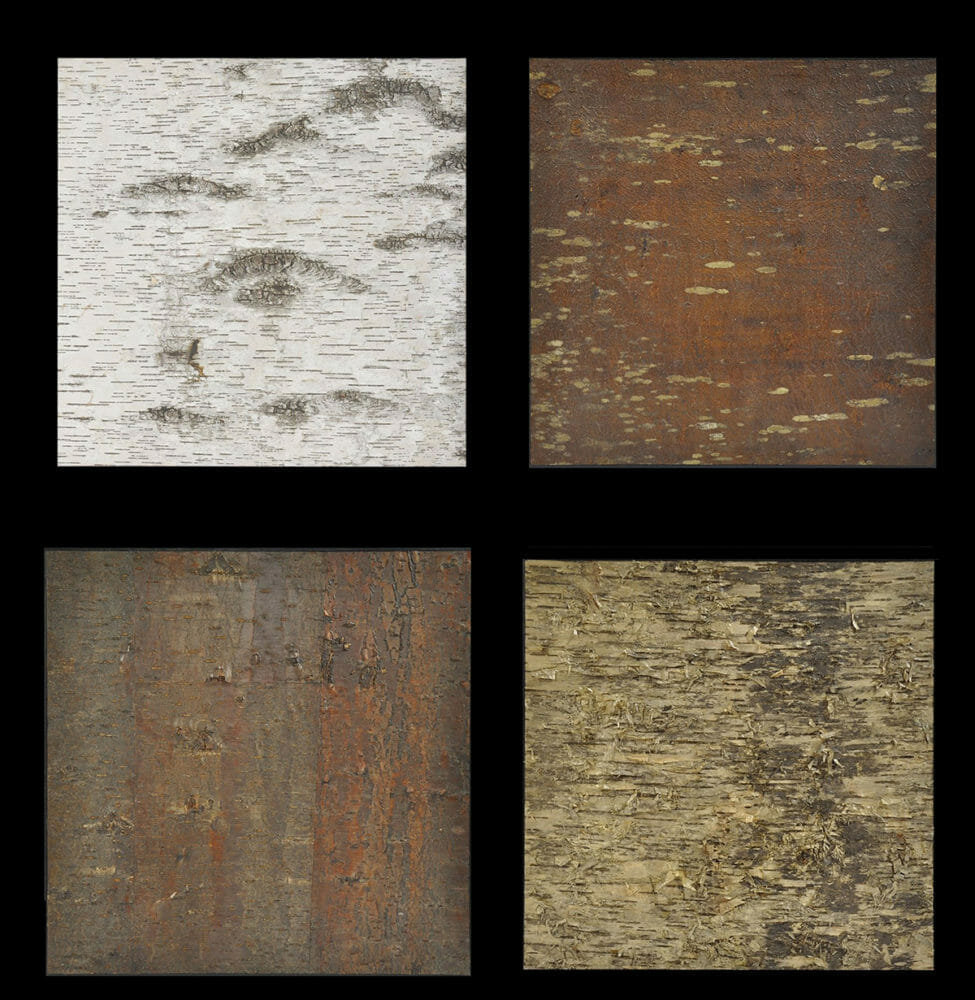 White Birch, Yellow Birch, White Pine, & Cherry bark laminate wall coverings offered by Bark House