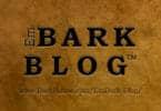 EmBark Blog Newsletter for February 2016