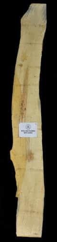 Box Elder Live Edge Slab for sale at the Bark House #BXEL-SLR-16-0004