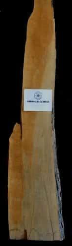 Buy live edge Hard Maple wood slab for sale at Bark House at Highland Craftsmen