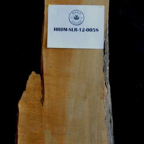 Buy live edge Hard Maple wood slab for sale at Bark House at Highland Craftsmen