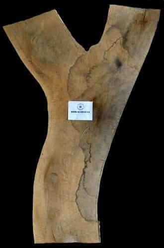 Buy live edge Red Oak Y-shaped slab for sale at Bark House at Highland Craftsmen