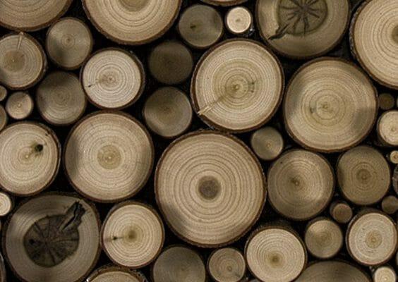 Bark House Custom Fabricated Poplar Pole End Cuts pieced together