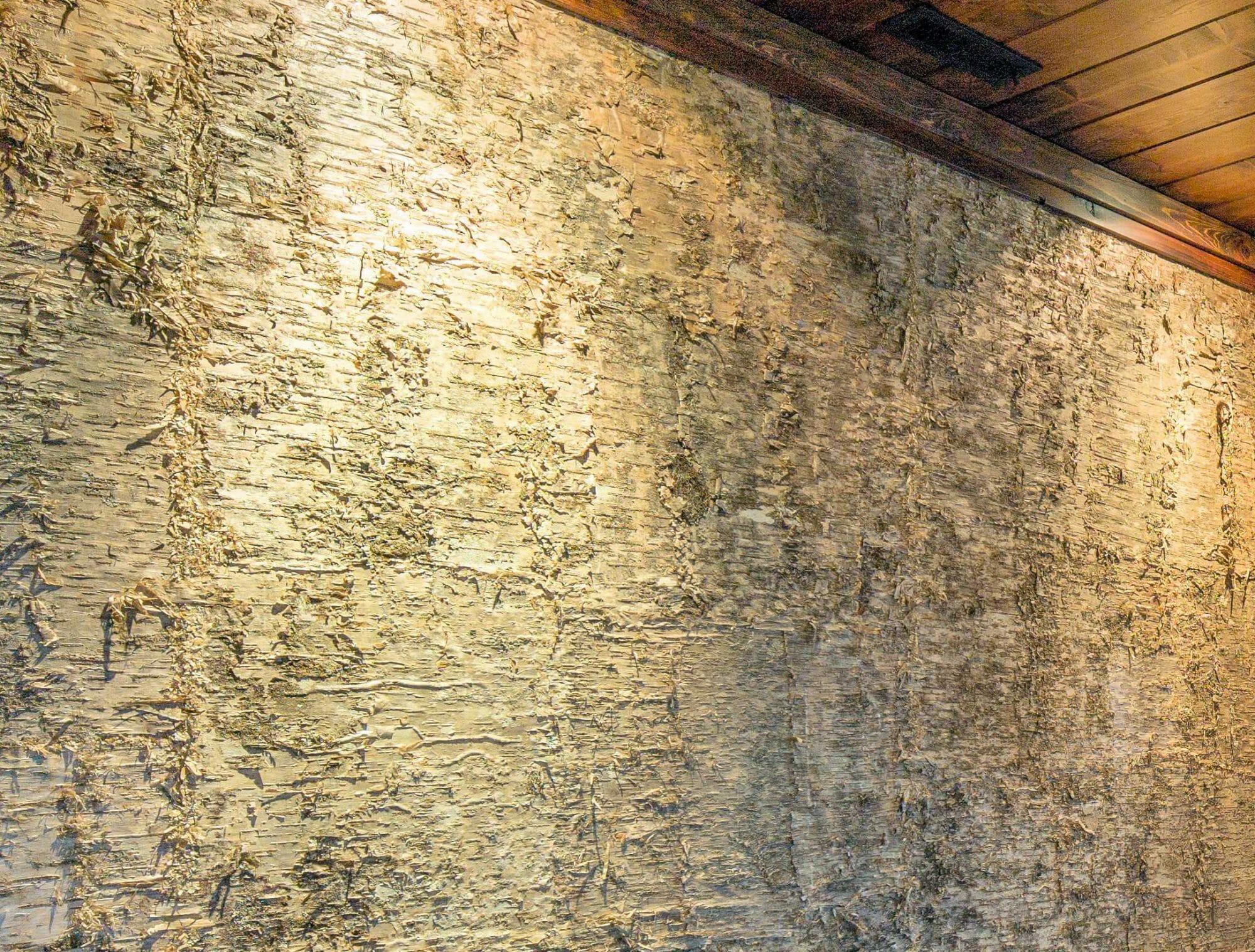 Luxury Birch Wall Paneling | Bark Laminate Wall Covering | Bark House