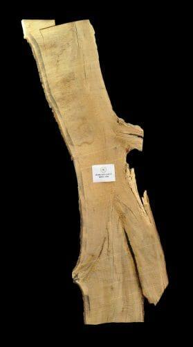 For sale at the Bark House: white oak live edge slab 18-0015