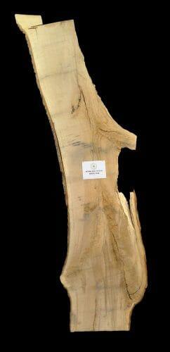 For sale at the Bark House: white oak live edge slab 18-0016