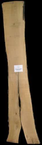 Butternet live edge wood slab for sale at Highland Craftsmen Bark House BRNT-SLI-18-0002