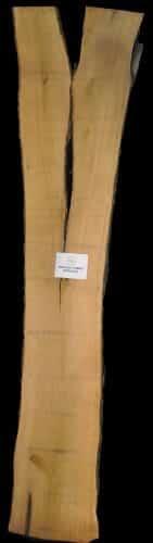 Butternet live edge wood slab for sale at Highland Craftsmen Bark House BRNT-SLI-18-0003