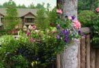 Summer flowers and Bark House brand Poplar Bark Shingles and poplar pole railings