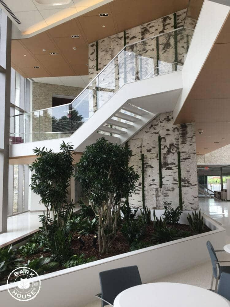 Bark House White Birch Bark Wall Covering Panels in Cancer Hospital