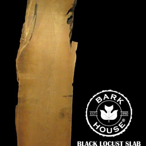 For Sale: Bark House live edge slabs and mantels. Black Locust SLR-12-0077